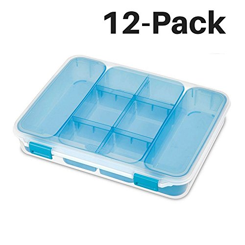 Large Divided Case, Pack of 12 by STERILITE