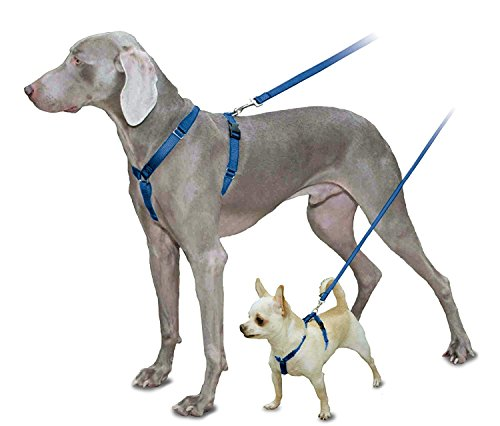 PetSafe Sure-Fit Harness, Adjustable Dog Harness from the Makers of the Easy Walk Harness