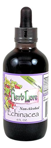 Herb Lore Organic Echinacea Tincture - 4 Ounces - Alcohol Free - Immune System Support For Children and Adults