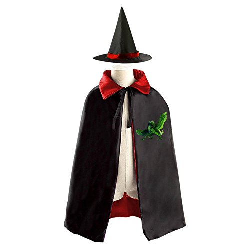 3 Person Matching Costumes (Green Pterosaur Deluxe Unisex Kids Halloween Reversible Costumes Cloak Cape With Witch Hat)