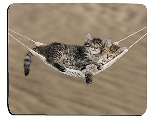 Cute tabby kittens sleeping in a hammock Mouse Pad, Mousepad (Cats Mouse Pad)