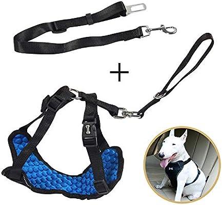 Chaleco de seguridad para el perro Arnés de cinturón de seguridad ...