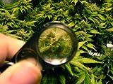 40X Jewelers Loupe Magnifier Hand Lens LED/UV