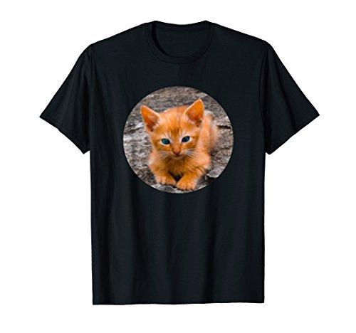Orange Tabby Portrait - Cute Orange Tabby Kitten Lover Cat Portrait T-Shirt Gift