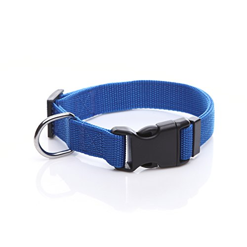 TAIDA Durable Adjustable Nylon Dog Collar, 1 Inch Wide, for Small Medium Dogs(Blue)