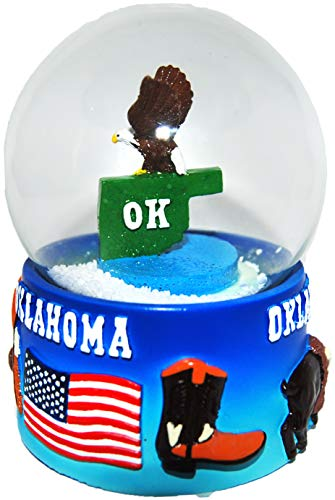 CityDreamShop State of Arkansas Large 65mm Souvenir Collectible Snow Globe
