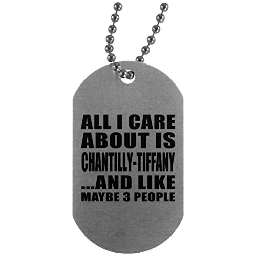 (All I Care About Is Chantilly-Tiffany - Silver Dog Tag Military ID Pendant Necklace Chain - Gift for Dog Cat Pet Owner Lover Friend Memorial Mother's Father's Day Birthday Anniversary)