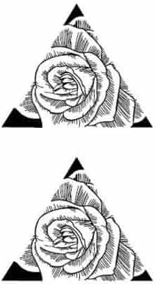 8fc727d891f9f SanerLian Set of 5 Waterproof Temporary Fake Tattoo Stickers Vintage  Geometric Triangle Flowers Grey Elegant