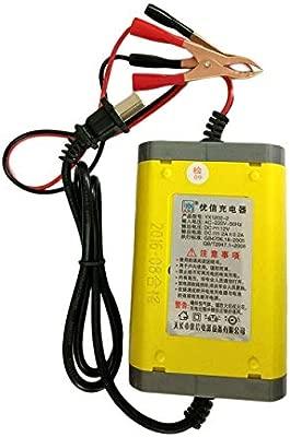 Lorenlli 12V 2A Inteligente Auto Power Bank Motocicleta Cargador de batería Portátil Automóvil Fuente de alimentación Accesorios para vehículos