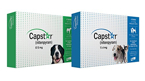 Large Product Image of Capstar Flea Tablets for Dogs and Cats, 6 Count, 2-25 lbs, Blue