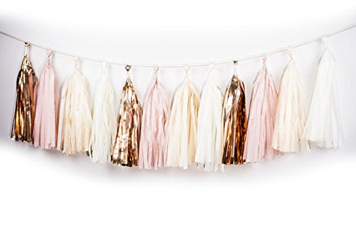 20 PCS Tassel Garland Banner Tissue Paper Tassels for Baby Shower Decorations | Wedding Decorations | Nursery Decor | Engagement, DIY Kits - (Blush + Gold + Pink + (Garland Blush)