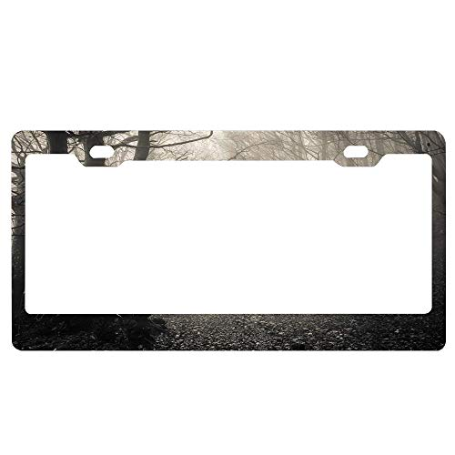 YUMHlicenseplateframeLL Path Through Dark Deep in Jungle with Fog Creepy Halloween Novelty Aluminum License Plate Decorative Front Plate 6 X 12 inches ()