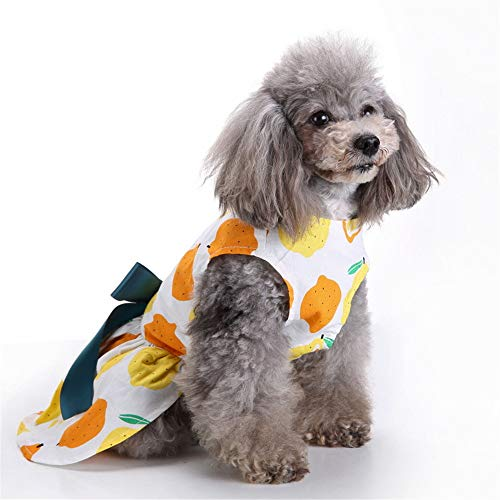 ALLAK Knitted Sweatshirts for Dog Coats Sweater Pet Hooded ()
