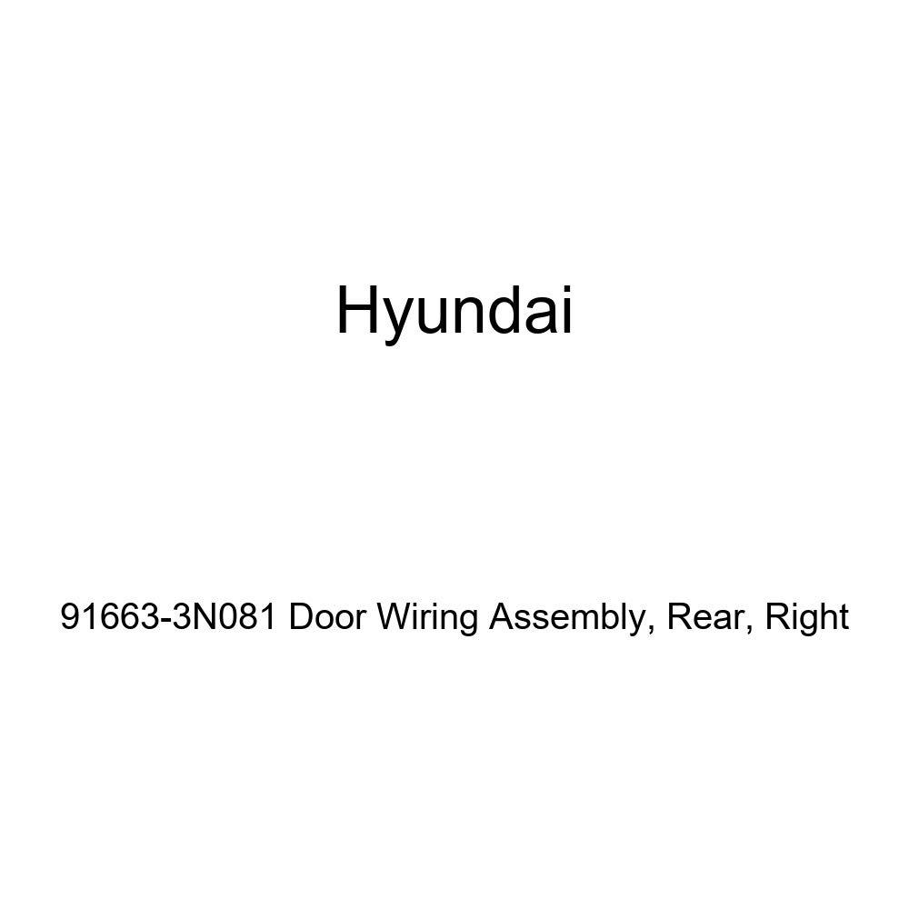 Genuine Hyundai 91663-3N081 Door Wiring Assembly Right Rear