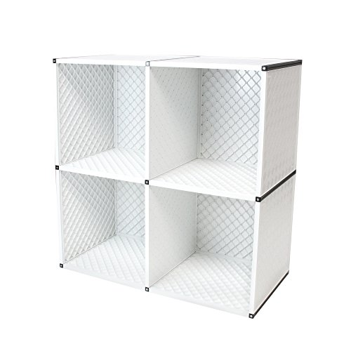 Bookcase Wall System (2-Tier Cube Storage Organizer, 4-Cube Shelf Cabinet, Bookcase, Closet, Etc - Can Be Wall Mounted! [White])