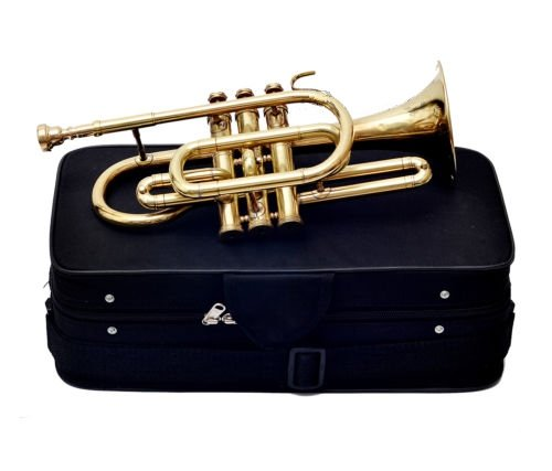 Queen Brass Cornet Finish B Flat Great Look & Sound With Case Mp Gold