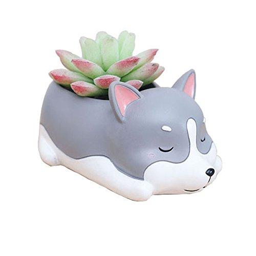Cuteforyou Cute Animal Shaped Cartoon Home Decoration Succulent Vase Flower Pots (Husky)