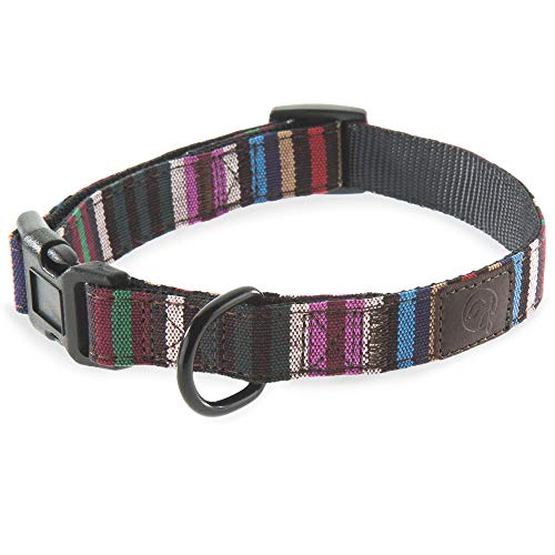 Embark Urban Dog Collar - Fun, Vibrant, Cute, Strong and Durable Dog Collars for Small, Medium and Large Dogs (Striped, Medium)