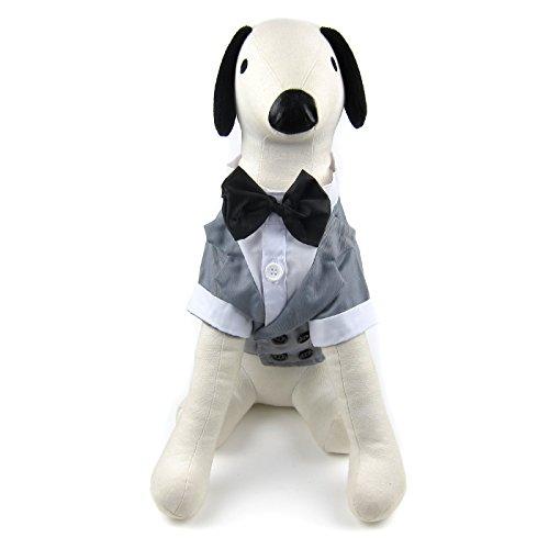 Alfie Pet - William Formal Tuxedo with Black Bow Tie - Color: Grey, Size: XL]()