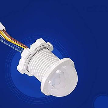 Anpro - Detector de Sensor PIR, luz de Techo, Micro Interruptor ...