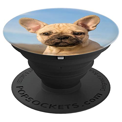 Cute young French Bulldog puppy portrait - PopSockets Grip and Stand for Phones and Tablets (Fawn French Bulldog)