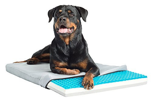 Enchanted Home Pet Theracool Gel Cell Cooling Pad With Tri Core Charcoal Infused Memory Foam