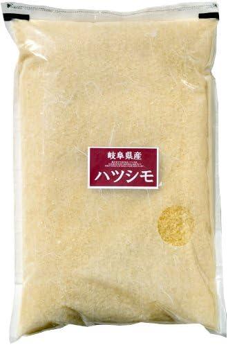 岐阜県 無洗米 匠の米ハツシモ 5kg 令和元年産
