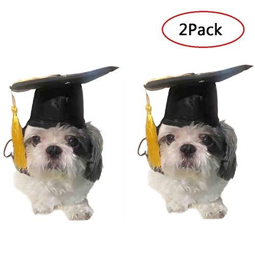 CheeseandU 2Pack Pet Grad