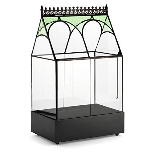 H Potter Glass Plant Terrarium Wardian Case Succulent Planter Container WAR158 ()