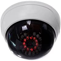 Camara falsa - TOOGOO(R)CCTV interior falsa camara simulada de seguridad de boveda con IR LEDs blancos