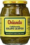 Orlando California Grape Leaves Kosher For Passover 16 oz. (Pack of 6)