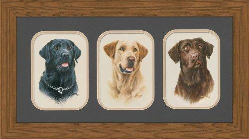 Wild Wings Labradors GNA Mini Triple Framed Print by Jim Killen