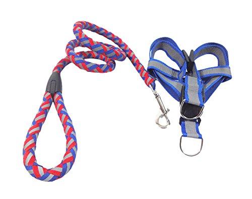 Uniquorn Nlyon Adjustable Loop Walk Rope Dog Lead Leash Redblue L (Ez Life Outdoor Furniture Australia)