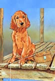 Cheap Irish Setter – Pipsqueak Productions Large Flag