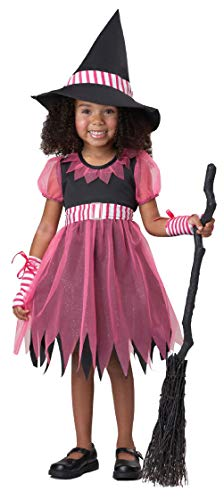 Pinky Witch Pinkalicioustoddler Costume