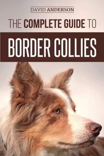 (The Complete Guide to Border Collies: Training, teaching, feeding, raising, and loving your new Border Collie)