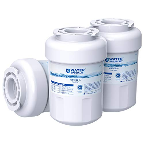 Waterspecialist NSF 53&42 Certified MWF Refrigerator Water Filter, Replacement for GE SmartWater MWFP , MWFA, GWF, HDX FMG-1, WFC1201, GSE25GSHECSS, PC75009, RWF1060, 197D6321P006 (Pack of 3) ()