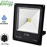 30W LED Flood Lights Outdoor Security Light, Waterproof Floodlight Lamp for Garden/Yard/Lawn/Patio/Porch, 6000K Daylight White, 250W Equivalent,86-265V Input, Aluminum(with UK 3-Plug)