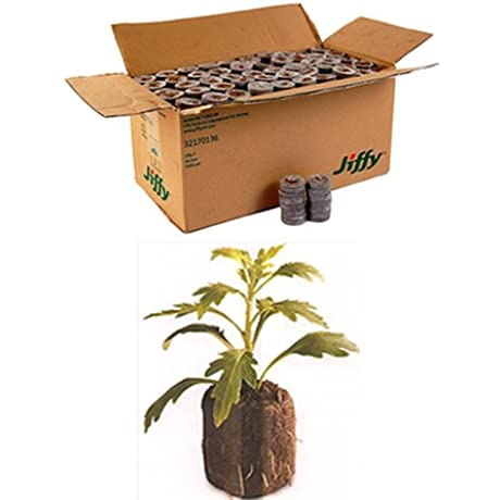 1000 Count Full Case Jiffy 7 Peat Pellets Seed Starter Soil Plugs 36 Mm Start Seedlings Indoors Easy To Transplant To Garden