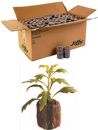 2000 Count - Jiffy 7 Peat Pellets - Seed Starter Soil Plugs - 36 mm - Start Seedlings Indoors - Easy To Transplant to Garden by Jiffy