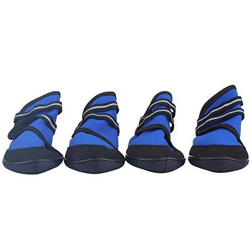 Xs Dog Shoes - 5