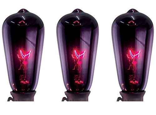 Purple Edison Lights10ct for $<!--$28.86-->