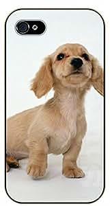 iPhone 6 Case Dachshund - black plastic case / dog, animals, dogs
