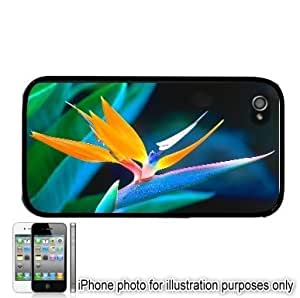 Bird Of Paradise Photo Apple iPhone 4 4S Case Cover Black