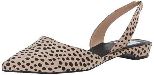 DV by Dolce Vita Women's AIM Ballet Flat, Leopard Stella Suede, 7.5 M US