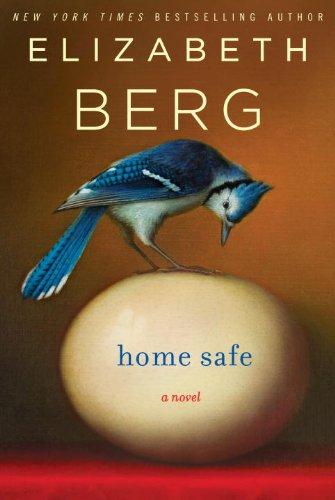 Home Safe: A (Safe Home)