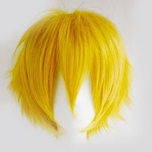Unisex Sexy Oblique Bang Full Wig Short Straight Fluffy for Anime Cosplay Costume Party (Workplace Halloween Costume Themes)