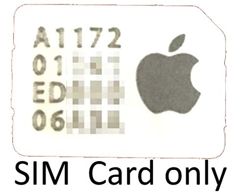 Apple Nano Sim Card for iPad models with Touch ID Air 2 mini MJVV2LL/A (4s Card Sprint Sim)