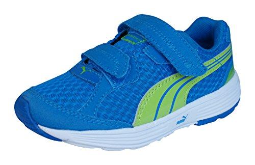 Puma Descendant V muchachos de los zapatos corrientes Blue