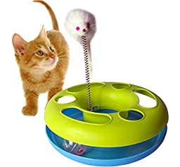 GPET Catch the Mouse Motion Cat Toy, 10 Inch